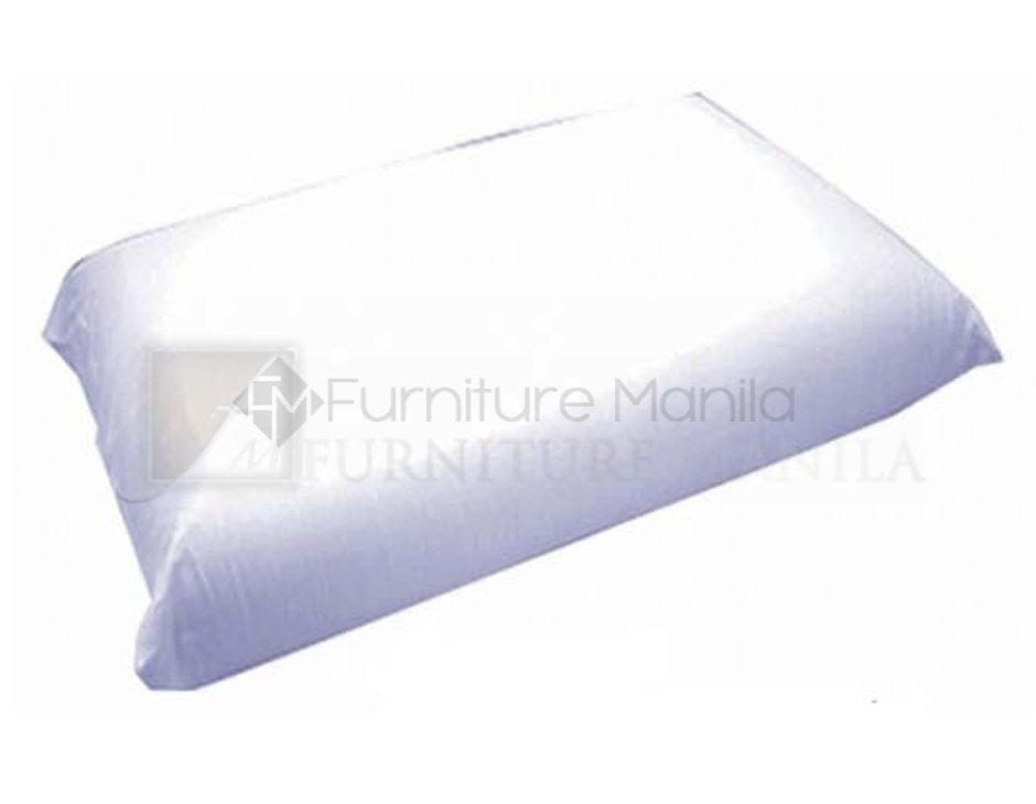mandaue_pf-tsp_tendersoftpillow